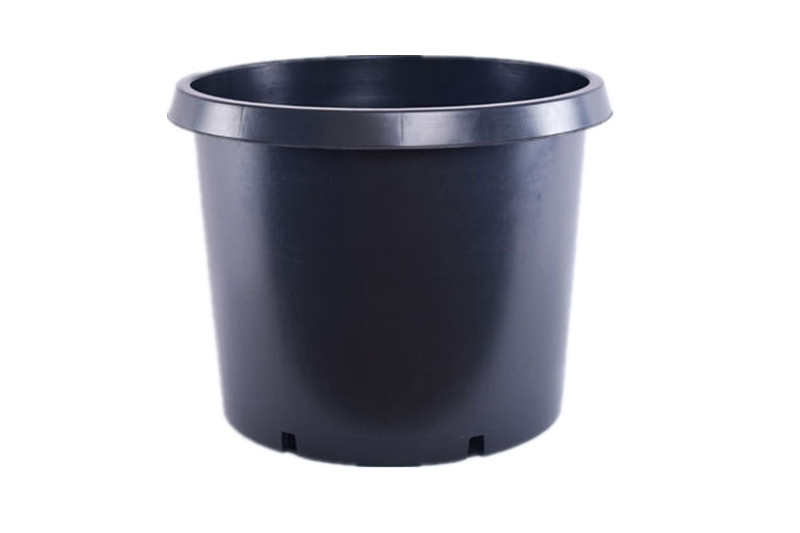 gallon pot